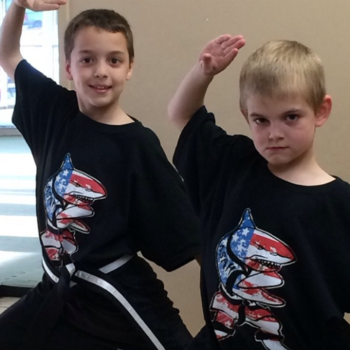 action karate karate classes and martial arts
